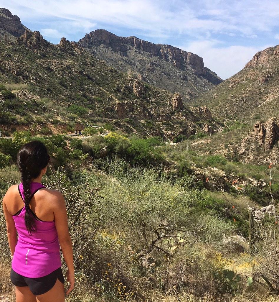 Sabino Canyon: Hill Training