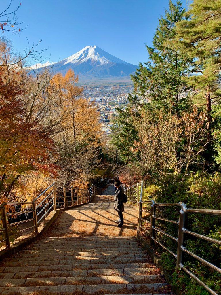 Happily Pink Tokyo to Mount Fuji 1